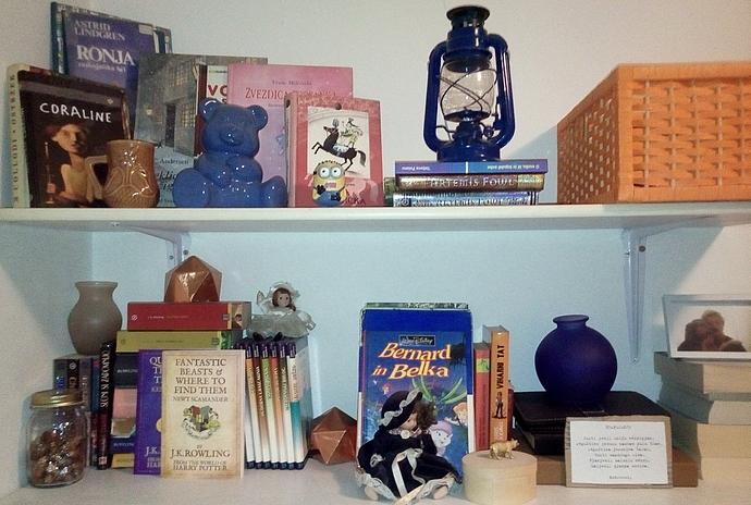 Na moji knjižni polici so tudi knjige iz druge roke.
